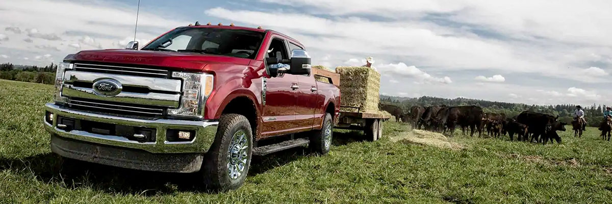 Buy a New Ford Super Duty F-250 near Me