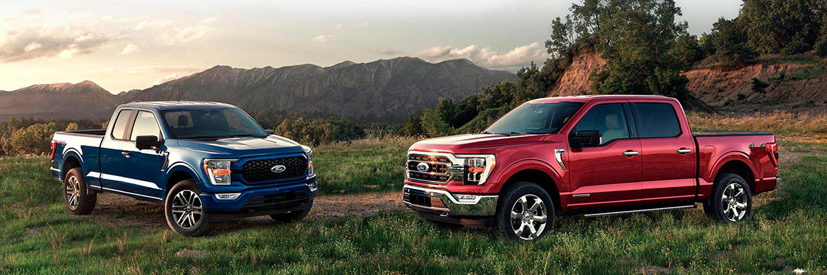 2021 Ford F-150 Model Line-up